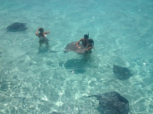 Cayman, sting rays, good luck,