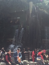 Restaurant hidden behind the waterfall - sense of taste
